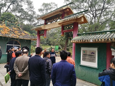 The members of Guangxi Botany Academy visited the Gesneriad Conservation Center of China,GCCC