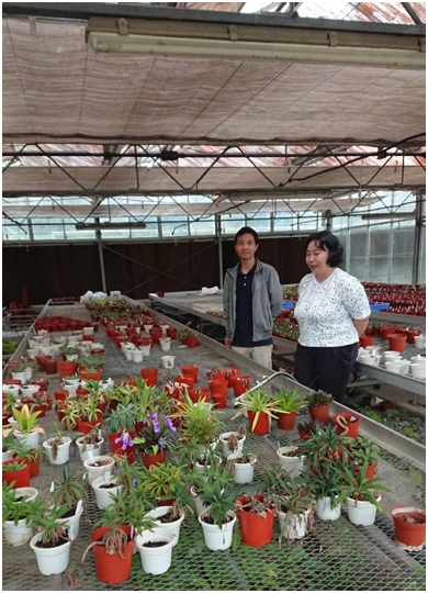 The Member Of GCCC visited the South China Botanical Garden, Chinese Academy of Sciences